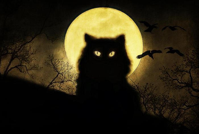 black-cat-hazel-billingsley.jpg